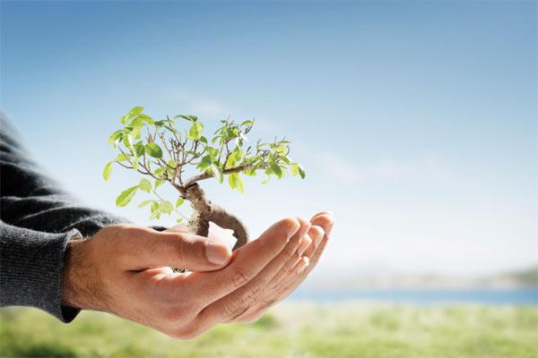 Экологическая политика ООО «ИНЭКТИО»